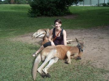 Maurer M Australia Kangaroo Picture Summer 2015